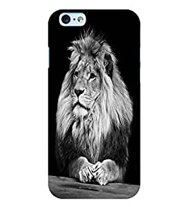 Citydreamz Lion/Wild/Animals/Jungle Hard Polycarbonate Designer Back Case Cover For Apple Iphone 6 Plus/6S Plus