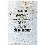 Nadie es perfecto pero ser un ventilador romet es lo suficientemente cerca