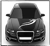 DD Dotzler Design - 2405_07 - Aufkleber für Motorhaube oder Heckscheibe - Breite 80 x 19 cm - Autodekor Autoaufkleber Car Tattoo Aufkleber Auto Car Tribal