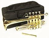 Cherrystone 0754235505976 Piccolo Trompete mit Koffer und Zubehör gold