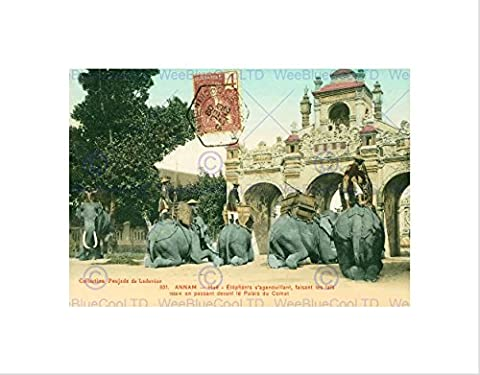 VINTAGE PHOTOGRAPH INDOCHINA COLLECTION ELEPHANTS KNEELING FRAMED ART PRINT B12X10364