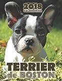 Terrier de Boston 2018 Calendrier (Edition France)