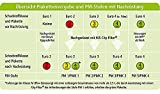 HJS 93 13 1186 Original-DPF« City-Filter Nachrüstsatz, Katalysator/Rußpartikelfilter (Kombisystem)