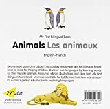 Image de Animals / Les animaux