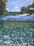 Gewässerperlen ? die schönsten Flusslandschaften der Schweiz: Mit Wanderungen für eindrückliche Naturerlebnisse am Wasser - Urs Fitze