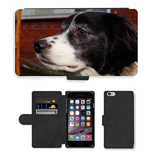Just Mobile pour Hot Style Téléphone portable étui portefeuille en cuir PU avec fente pour carte//m00139167Tête Portrait pour chien Noir et blanc//Apple iPhone 6Plus 14cm