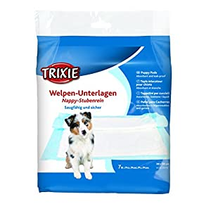 dog incontinence, Dog Incontinence Solutions, Dog Incontinence
