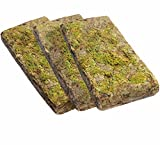 Dragon - Forest Moos - Tropisches Terrarium Substrat Forest Moss 3x100g