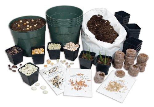 delta-educacion-110-8349-plantacion-starter-set
