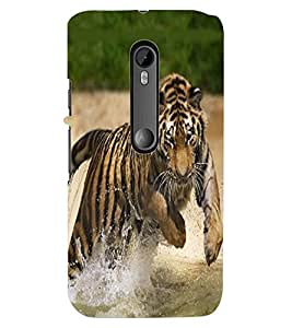 ColourCraft Tiger Hunt Design Back Case Cover for MOTOROLA MOTO G TURBO EDITION