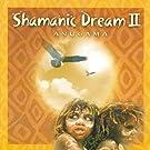Shamanic Dream Vol. 2