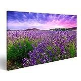 islandburner Bild Bilder auf Leinwand Lavendel Feld Büsche Provence Poster, Leinwandbild, Wandbilder