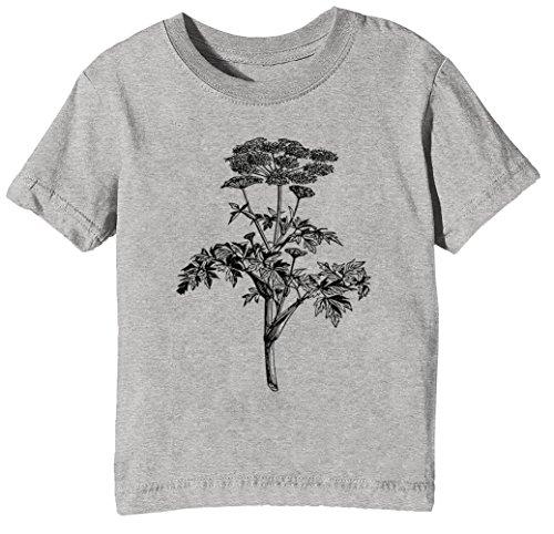 Engelwurz Kinder Unisex Jungen Mädchen T-Shirt Rundhals Grau Kurzarm Größe XL Kids Boys Girls Grey X-Large Size XL (T-shirt Kurzarm Lager)