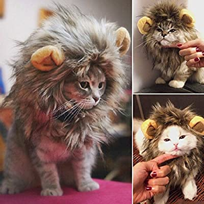 Kingdommax Pet Wig Christmas pet cat wig