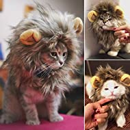 Kingdommax Pet Wig Christmas pet cat wig