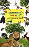Encyclopedia for kids: 100 common animals, help your child learn to read, animals name through vivid, sharp images. (Kid learn to read Book 2) (English Edition)