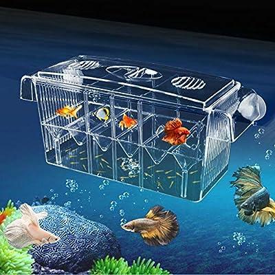 Aquarium Ablaichkasten Klein GroßMultifonctionnel hautement transparent Boîte de nidification de poissons auto-nageant Double couche Berceau pour la pisciculture Aquarium Incubateur Isolation Box