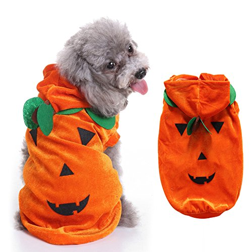 Steellwingsf Halloween Lovely Kürbis Kostüm Anzug für Katze Hund Party Fancy Kleid Pet Apparel Hoodie - Cat Fancy Dress Kostüm Anzüge