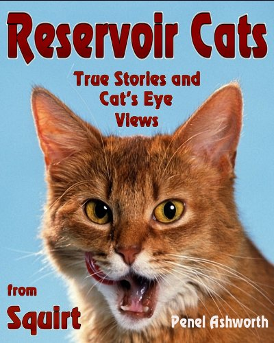 reservoir-cats-true-stories-and-cats-eye-views-from-squirt