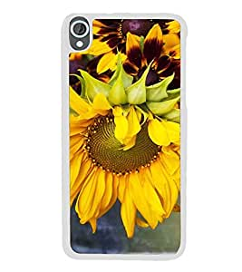 ifasho Designer Back Case Cover for HTC Desire 820 :: HTC Desire 820 Dual Sim :: HTC Desire 820S Dual Sim :: HTC Desire 820Q Dual Sim :: HTC Desire 820G+ Dual Sim ( Girls Seeking Guys Dating Gold Jewlery Lucknow Top Music Wedding Crashers)
