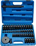 FreeTec Set da 50 pezzi cuscinetti per ruota, dischi di montaggio, guarnizioni radiali, pistoni, cuscinetti, elastici, estrattori, pressori, presse, strumento, set guida 18–65 mm