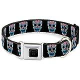 Buckle Down 22,9–38,1cm Wonder Woman Floral Skull schwarz/Multi Pastell Hundehalsband