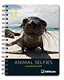 Animal Selfies 2019 - National Geographic Tierkalender, Buchkalender, Taschenkalender - 16,5 x 21,6