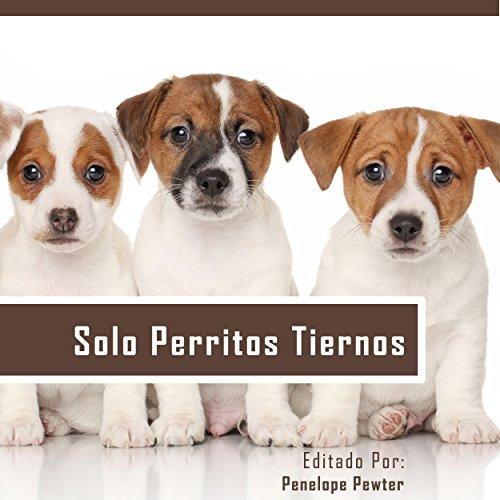 Solo Perritos Tiernos: Las Fotos Del Perrito Lindo y Citas Inspiradas Para Los Amantes Del Perro