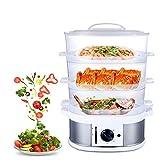 HRRH Vapore per Alimenti, 220V 750W 9L Grande capacità Multifunzione per la casa a Vapore Elettrico 60 Minuti di Cottura Cucina fornello