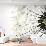 Fototapete Pusteblume 352 x 250 cm - Vliestapete - Wandtapete - Vlies Phototapete - Wand - Wandbilder XXL - Runa Tapete