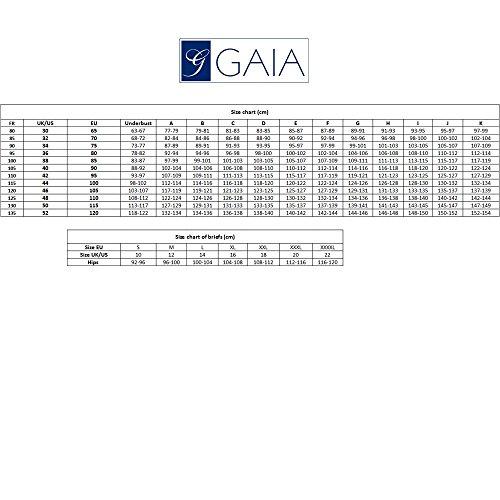 Gaia 489P Taylor Slips Damen Unterhosen Unterwäsche Stickerei Normaler Bund Setteil Top Qualität EU Beige
