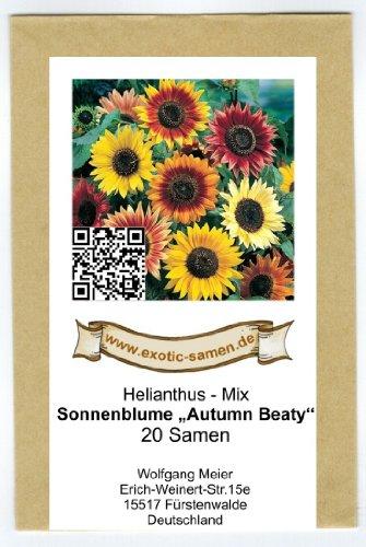 Sonnenblume 20 Samen (Sonnenblume - Autumn Beauty - Samenmischung - 20 Samen)