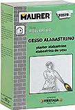 Gesso Alabastrino Maurer 1Kg per la produzione di manufatti in gessi, cornici