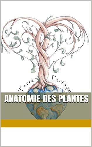 Anatomie des plantes