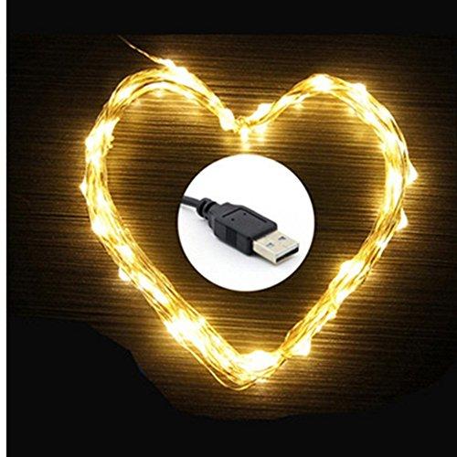 eleidgs 100LED 10m/33FT, rame filo impermeabile flessibile barra luminosa con porta USB, per interni ed esterni, matrimoni, feste di Natale, (bianco caldo)