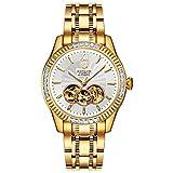 binlun 18K acero inoxidable bañado en oro para hombre reloj automático impermeable luminoso manos negro Dial
