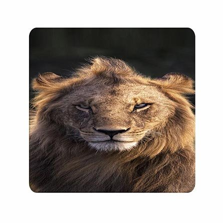 Art Word Wonderful Quality Mouse Pad The Lion King Designer Superb For Girls