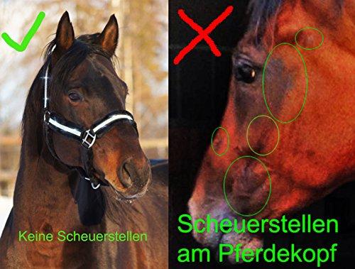 Meister Comfort Headcollar for Nobility, Travel, Stable Horse Headcollar Halter 4