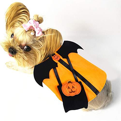 Weiblicher Dämon Kostüm - POPETPOP Hund Halloween Outfits kürbis dämon Design kostüm für Hunde Katze welpe Halloween Weihnachtsfeier Kleid Cosplay - m