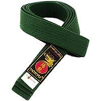 Yoryu - Cinturón de artes marciales para karate y judo, 100 % algodón, de colores, Verde, L-290CM