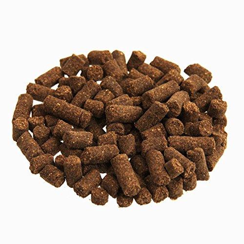 WOOOF Regular 30kg kaltgepresstes Hundefutter mit Rind, natürliche Zutaten, hoher Fleischanteil, leicht verdaulich, ohne Weizengluten, Trockenfutter - 2