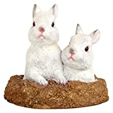Wonderland Hare / rabbits from the hole garden or home decor gift