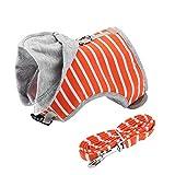 Pssopp Katzengeschirr mit Leine ausbruchsicher Baumwoll 1,20m Katzenleine, Robuste Katzengarnitur ideal für das Ausführen Kleiner Kätzchen(Orange)