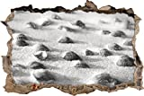 Muscheln im Sand Kunst Kohle Effekt Wanddurchbruch im 3D-Look, Wand- oder Türaufkleber Format: 62x42cm, Wandsticker, Wandtattoo, Wanddekoration
