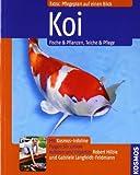 Koi: Fische & Pflanzen, Teiche & Pflege