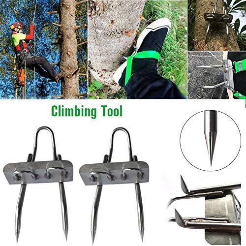 chinejaper Steigeisen Baumsteigeisen Kletterhilfen Baumklettern Spike Set Rostschutz Verschleißfest Einfache Verwendung Zum Pflücken Von Obst