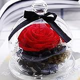 Rose Geschenk, wanshop Endless erhalten Rosen Blume in Glas Romantisches Geschenk Valentinstag Geburtstag rose Blume Geschenk für Ihr rot