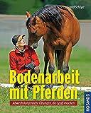 Bodenarbeit mit Pferden: Abwechslungsreiche Übungen, die Spaß machen