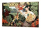 Blechschild Welt Reise Mexico Frau Papagei Obstkorb Tukan Bananen Wand Deko Schild 20X30 cm