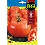 Semillas Fitó 318 - Semillas de Tomate
